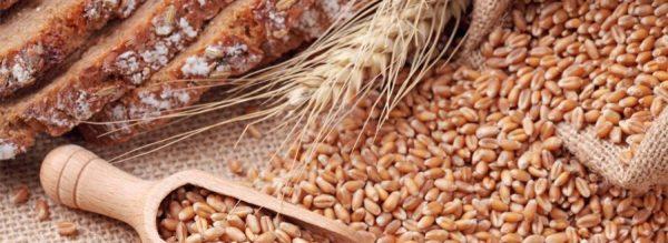 grains-900x328